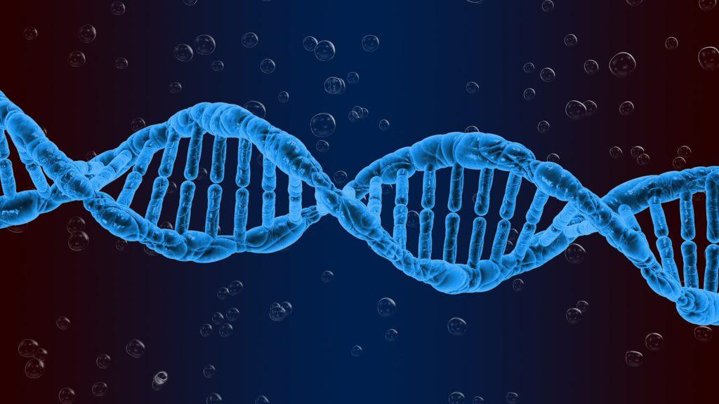 Parkinson's disease genetics