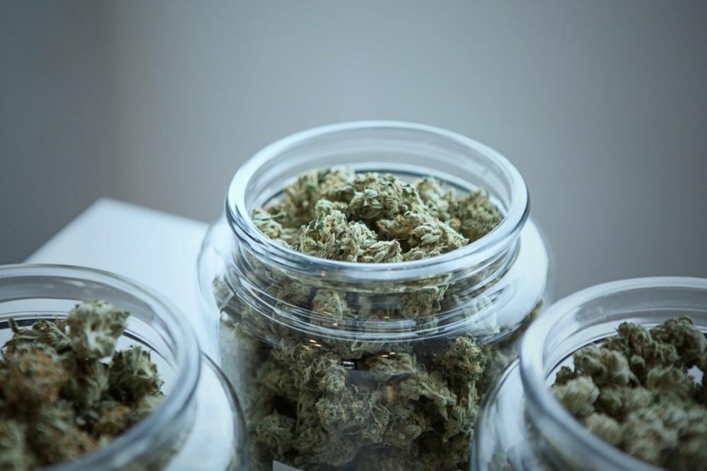 marijuana for Parkinson's